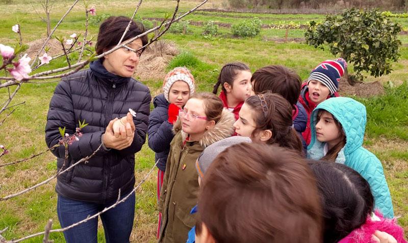 Maestra mostrando árbol a alumnos.