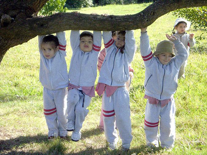 Grupo de niños jugando cerca de un árbol.
